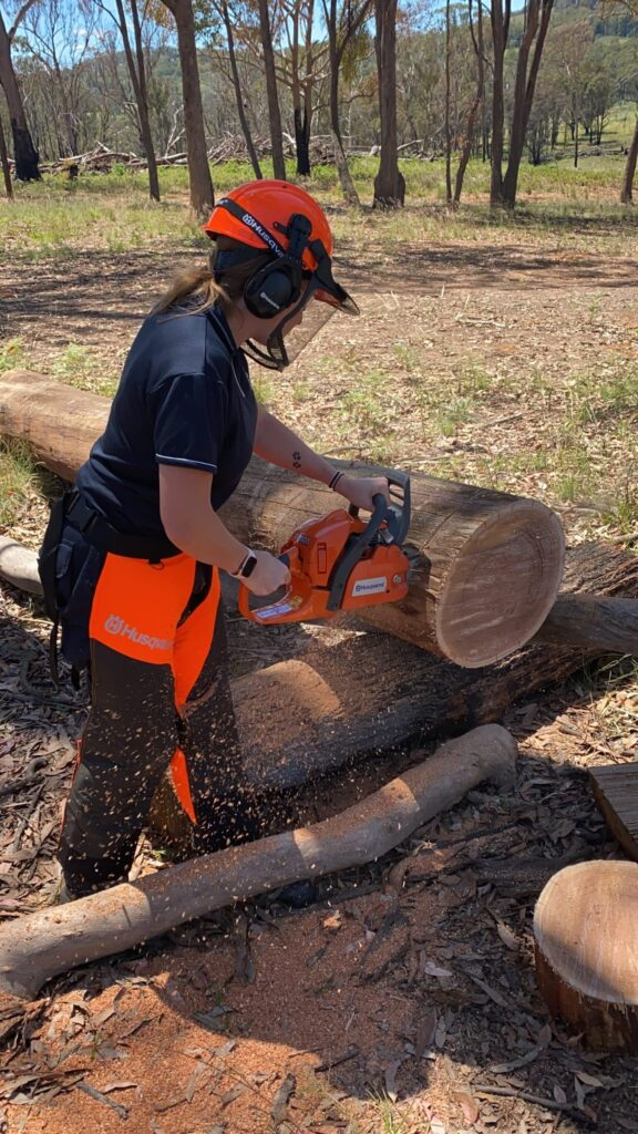 FWPCOT2256 - TRIM AND CUT FELLED TREES